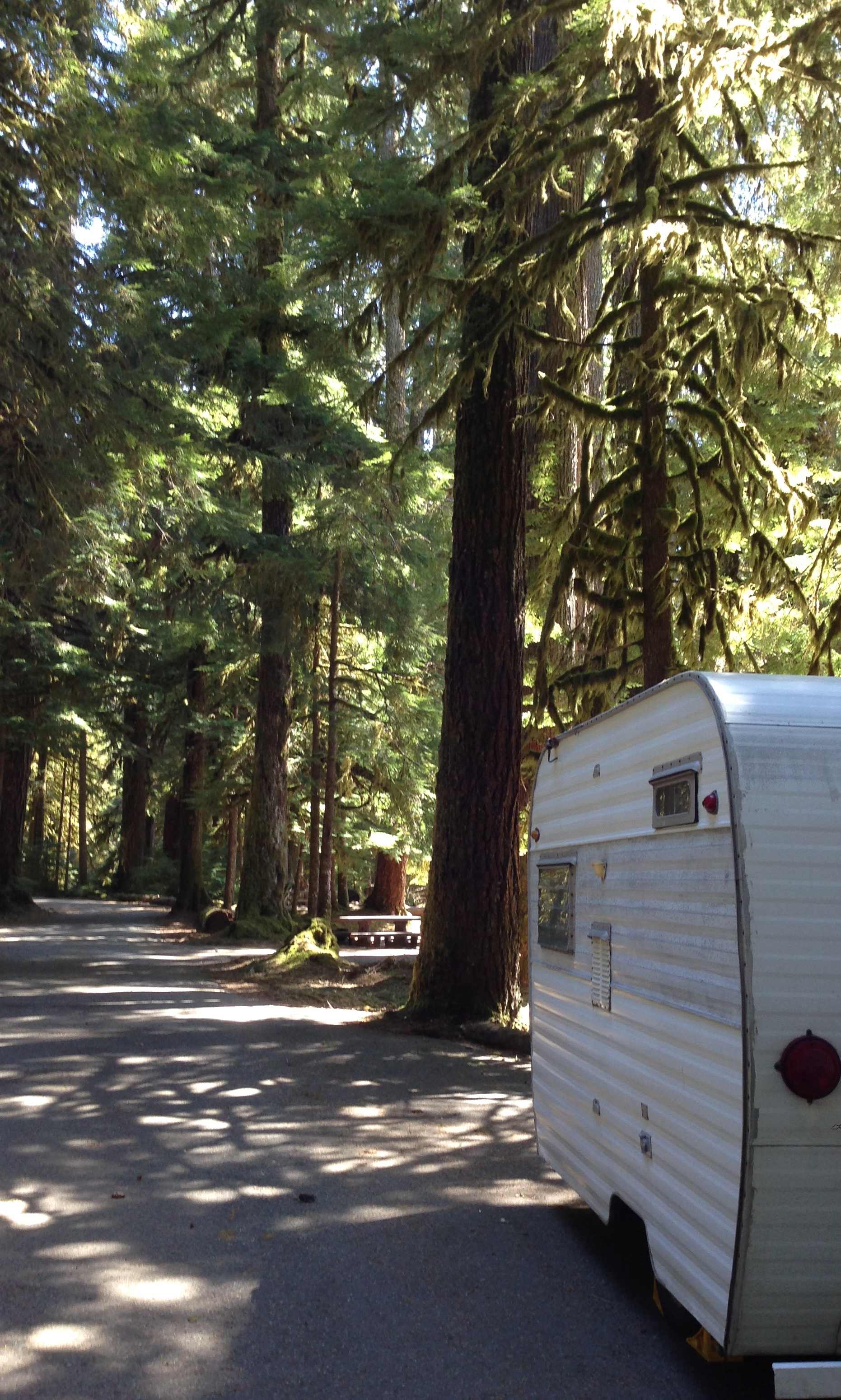 Our campsite at Sol Duc