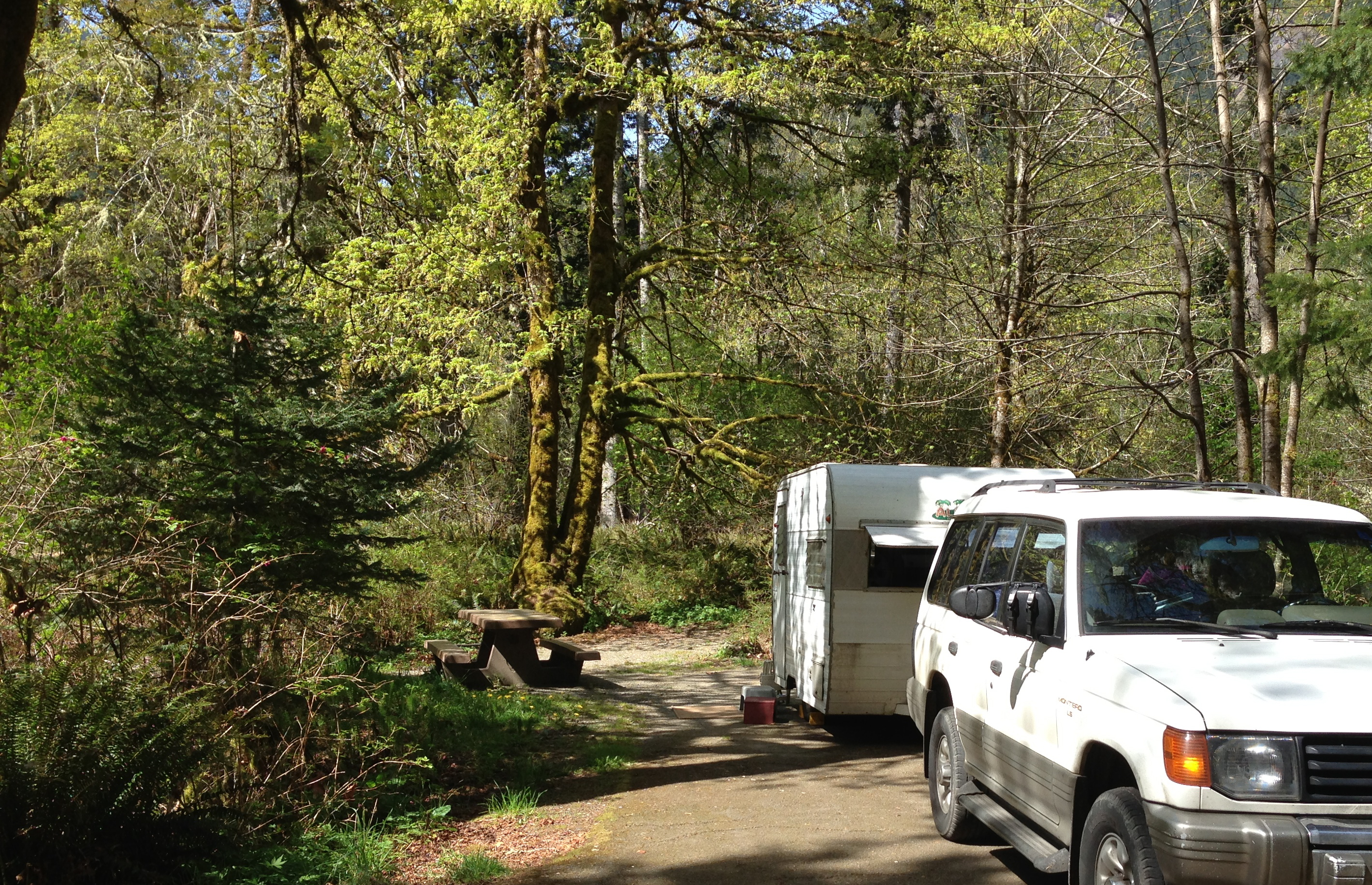 Elwha River Campground