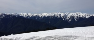 View of the Olympic Mountains from Hurricane Ridge
