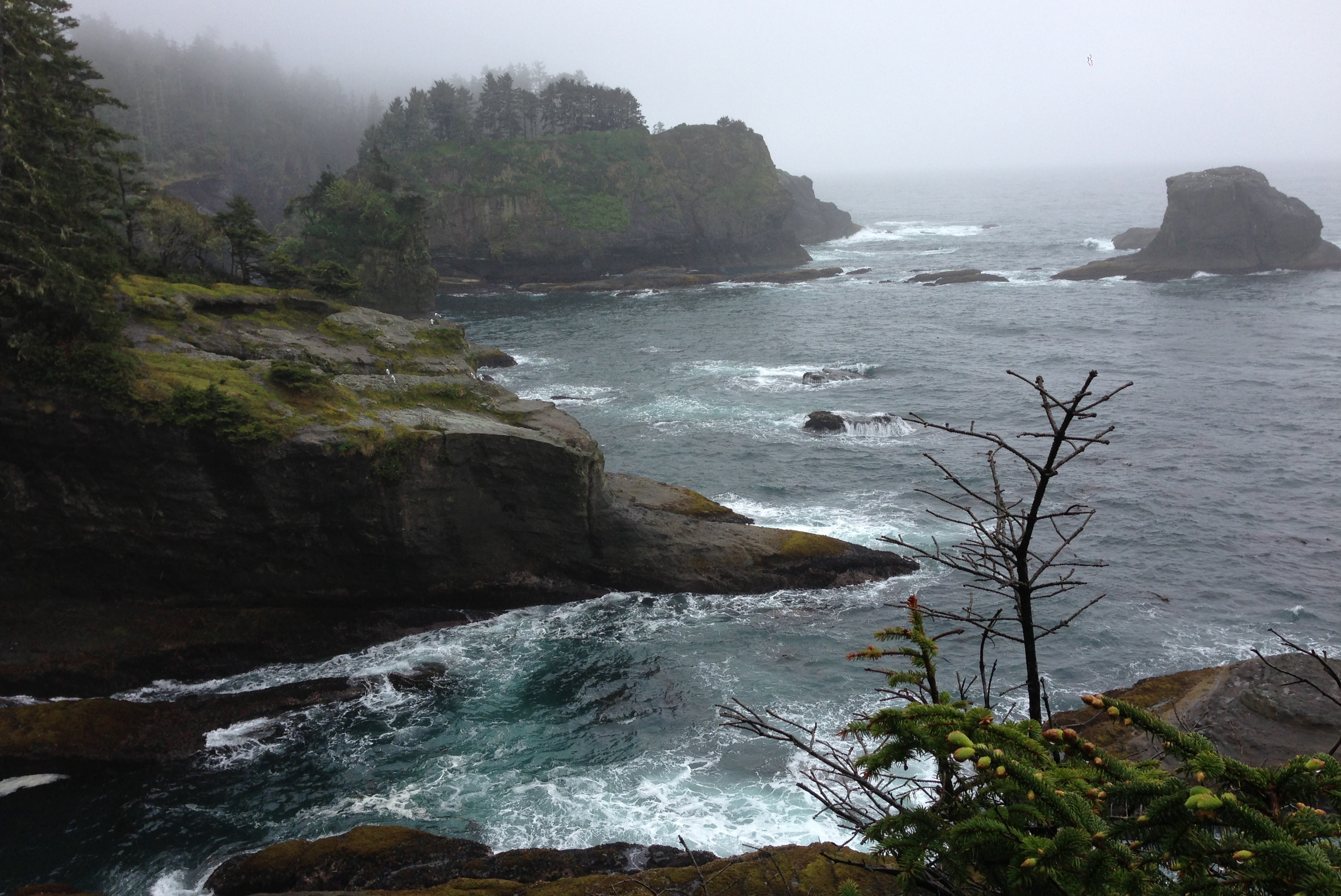 View from Cape Flattery - farthest northwest point of land on the continental United States