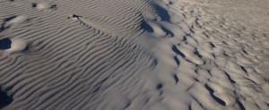 Wind-blown sand dunes