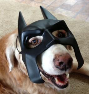 Dinah Batdog