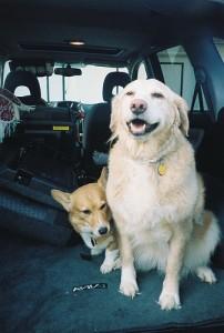 Roadtrip - Dinah and Pancho