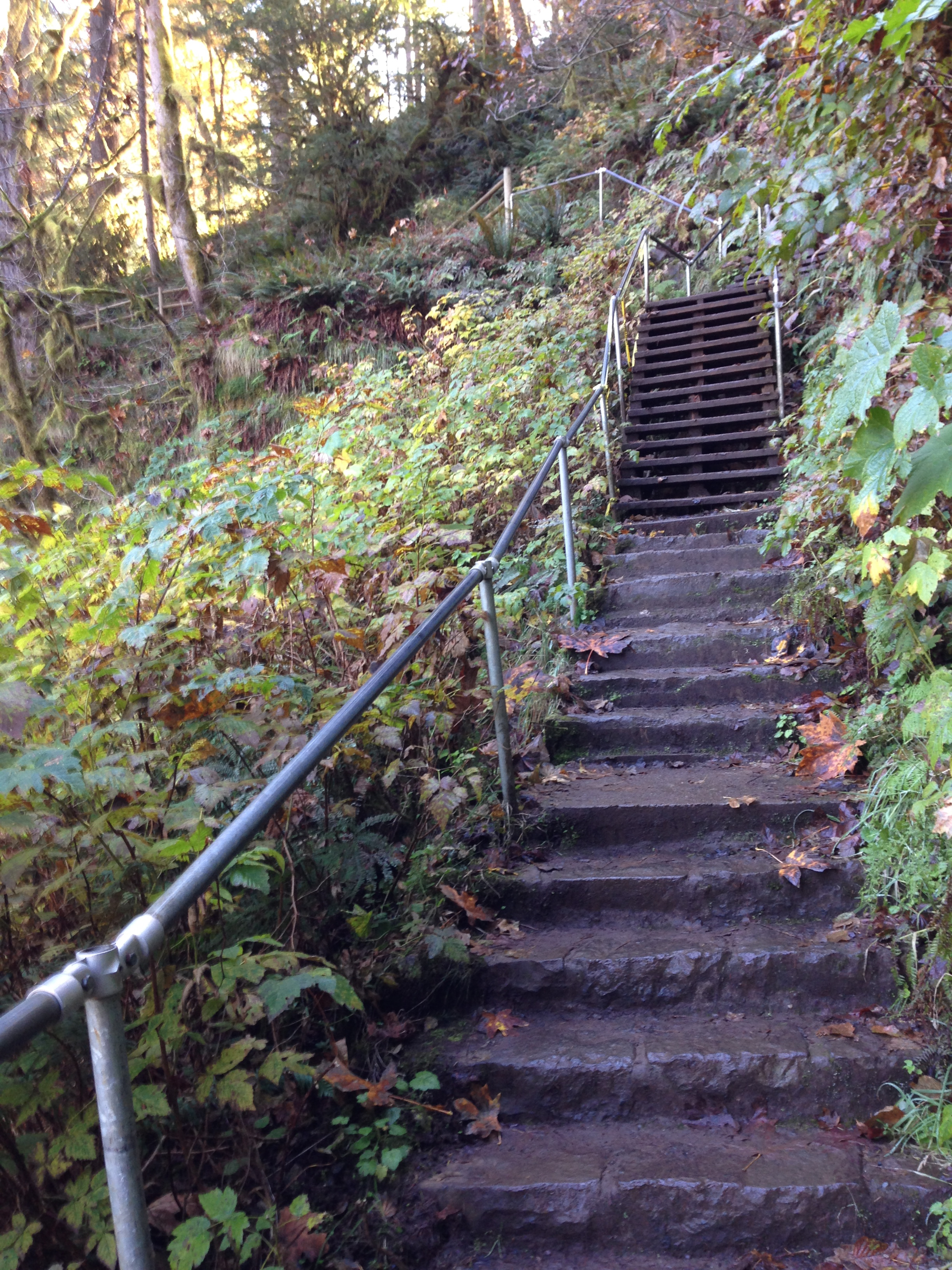 185 stone steps down to Lower South Falls