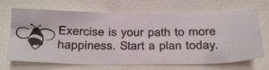 A fortune to start my serendipity