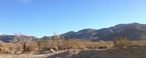 Desert scene outside my door