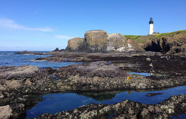 Yaquina Head Lighthouse and tide pools