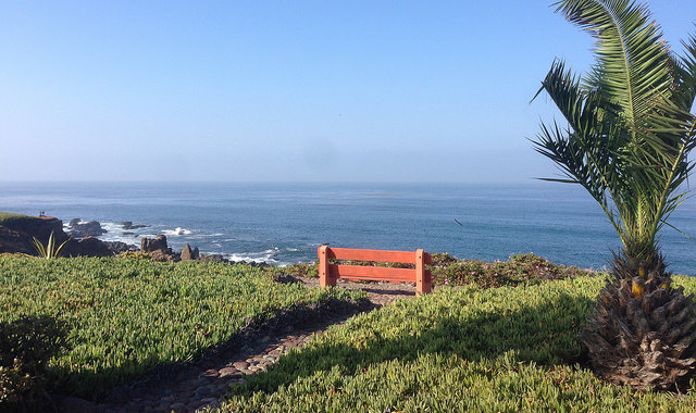 Bench overlooking the Pacific