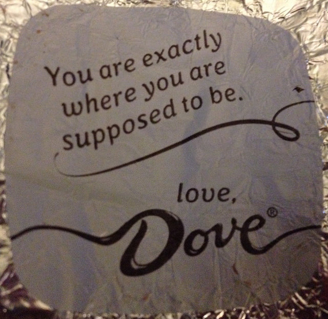 Dove where you're supposed to be