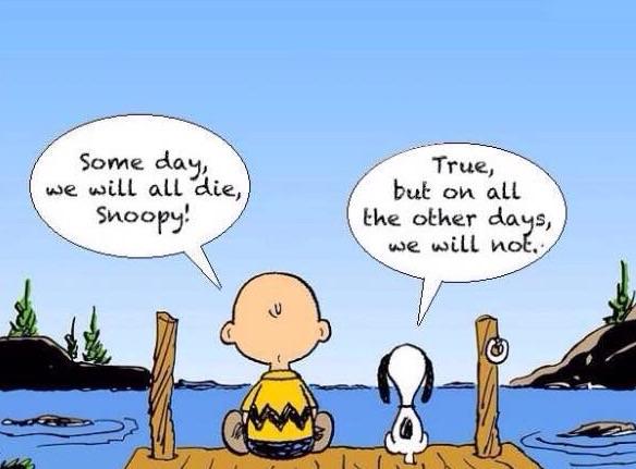 Charlie & Snoopy(c)