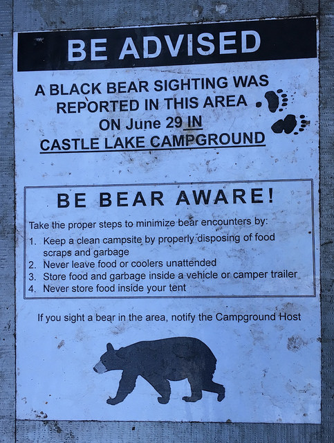 campground-bear-warning