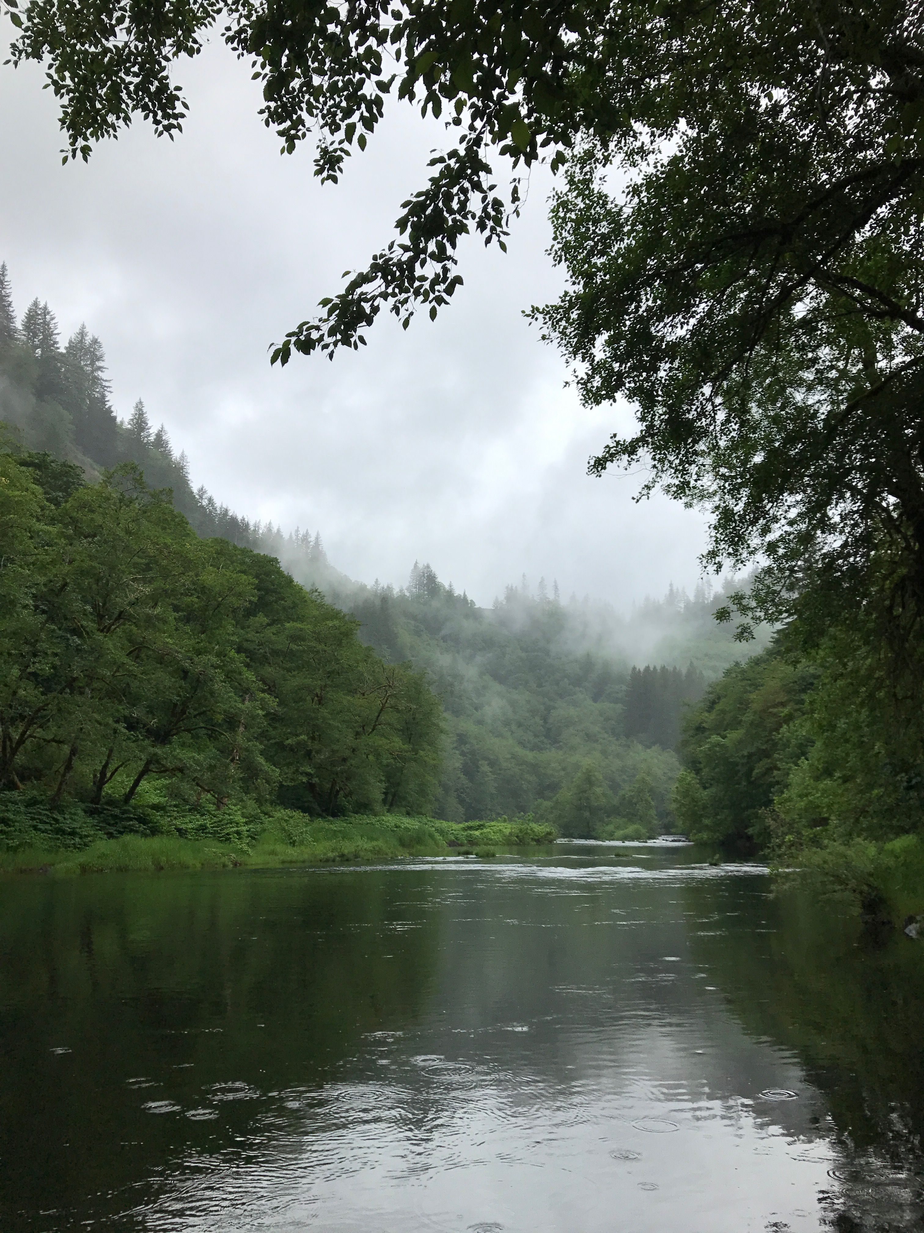 Finally here comes 65 i thought it would never happen for Nehalem river fishing